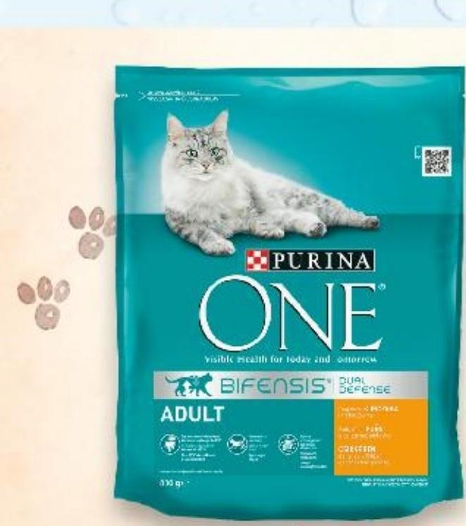 Karma dla kota Purina One niska cena