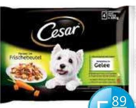 Karma dla psa Cesar