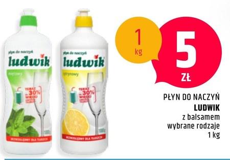 Płyn do mycia naczyń Ludwik