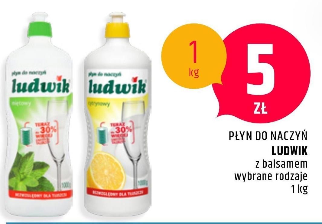 Płyn do mycia naczyń Ludwik niska cena