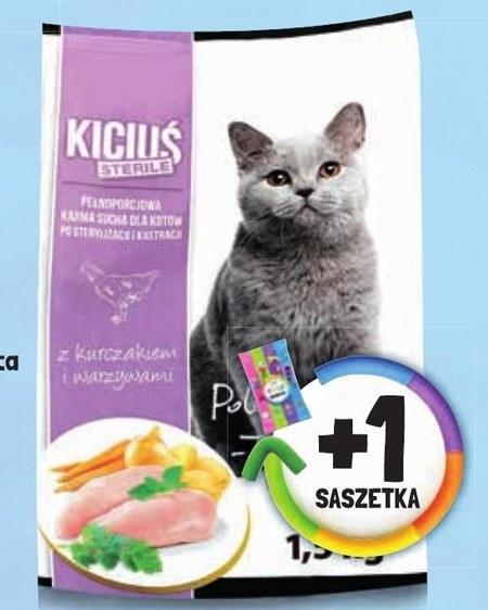 Karma dla kota Kiciuś
