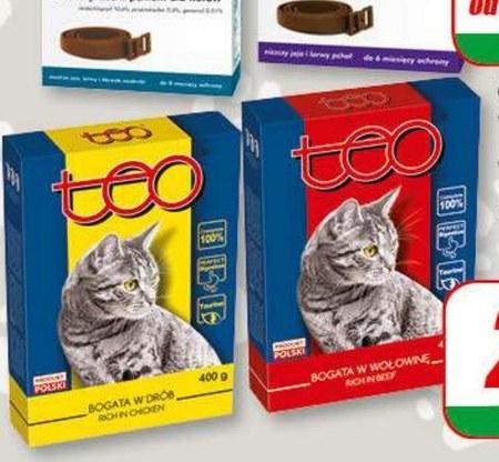 Karma dla kota Teo