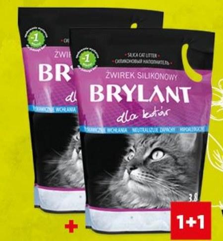 Żwirek dla kota Brylant