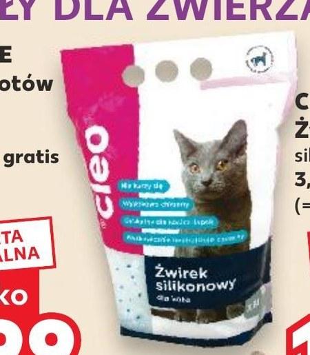 Karma dla kota Cleo