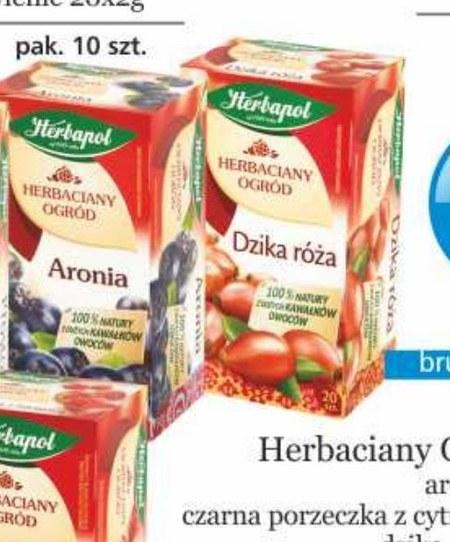 Herbata owocowa Herbapol