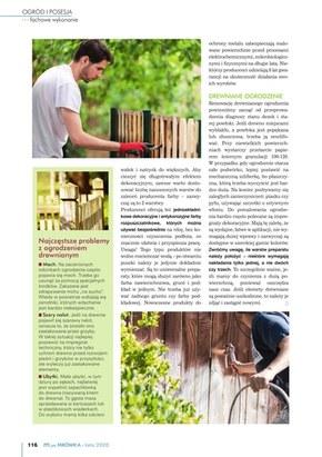Katalog lato PSB Mrówka
