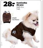 Kamizelka dla psa
