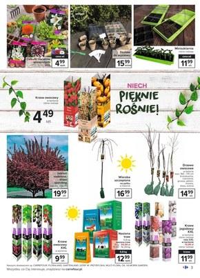 Wiosenne porządki z Carrefour!