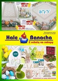 Oferta przemysłowa Hale Banacha