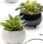 Sztuczna roślina