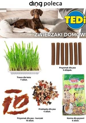 Gazetka promocyjna TEDi - Gazetka miesiąca Tedi!