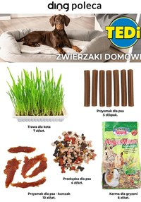 Gazetka promocyjna TEDi - Gazetka miesiąca Tedi!  - ważna do 31-05-2021