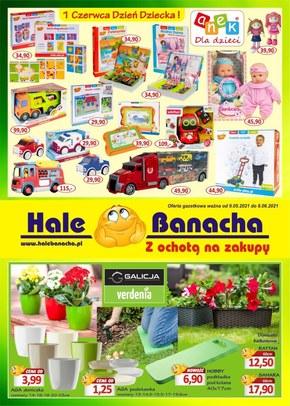 Hale Banacha - oferta przemysłowa