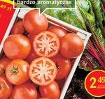 Pomidor