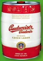 Piwo Budweiser