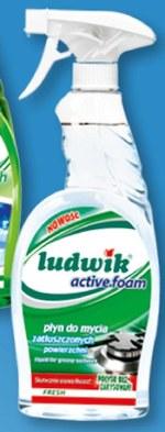 Płyn do mycia szyb Ludwik