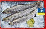 Pstrąg tęczowy Targ rybny Lidla