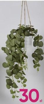 Sztuczna roślina Pepco