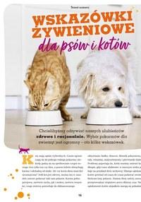 Gazetka promocyjna Maxi ZOO - Katalog jesienny Maxi ZOO