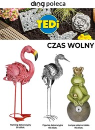 TEDi - czas wolny
