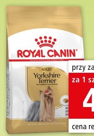 Karma dla psa Royal Canin niska cena