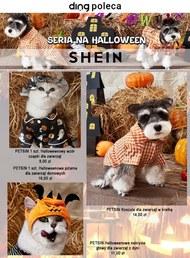 Oferta Halloween SHEIN