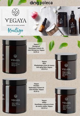 Vegaya w Kontigo!