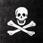 1,5 mln zł odszkodowań i wzrost piractwa o 100 proc.