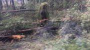 1,5 roku potrwa porządkowanie lasu w nadleśnictwie Rudy Raciborskie (film: Anna Kropaczek)