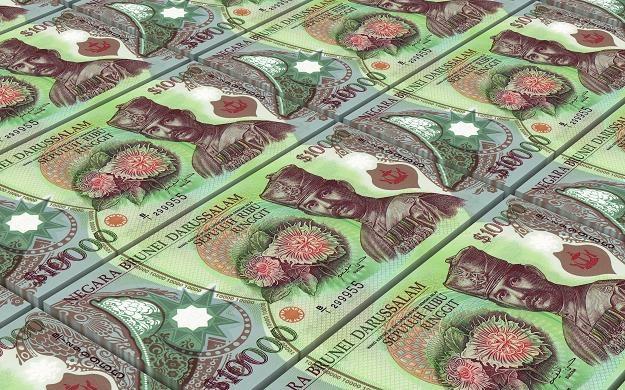 10 000 dolarów brunejskich /©123RF/PICSEL