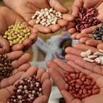 10 nasion o niesamowitych właściwościach prozdrowotnych