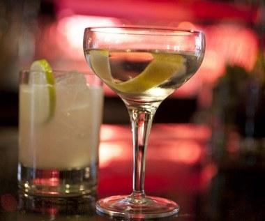 10 powodów, dla których picie ginu może być dla ciebie dobre