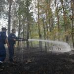 100 hektarów torfowisk płonie pod Kijowem