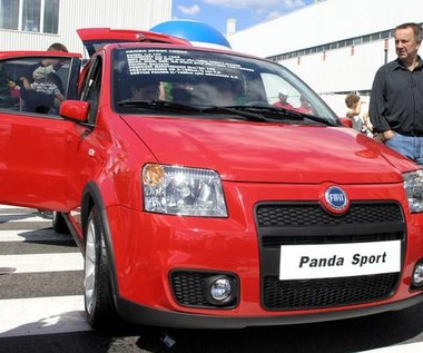 100 konna panda sport!