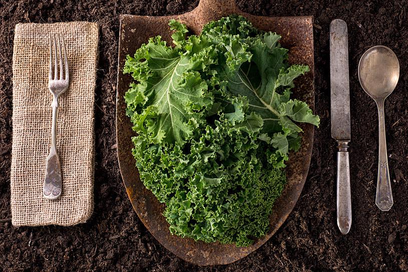 100 lat temu nasze babcie potrafiły wyczarować z dawnych warzyw prawdziwe rarytasy /123RF/PICSEL