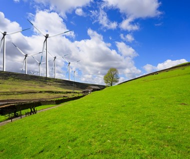 100 proc. zielonej energii do 2050 r. - tylko marzenie czy osiągalny cel?