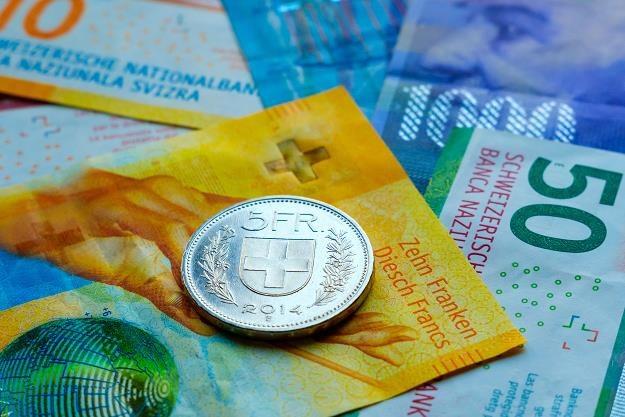 100 tys. osób wygrało proces z chorwackimi bankami ws. kredytów we frankach /©123RF/PICSEL