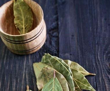 12 wspaniałych właściwości liścia laurowego