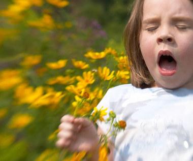 13 naturalnych sposobów na ulgę w objawach alergii