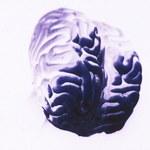 15 rzeczy, które pomogą poprawić pracę twojego mózgu