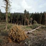 2,5 mln zł dla samorządów za straty pogodowe