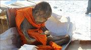 200-letnia mumia czy żywy człowiek? Sekret mongolskiego mnicha