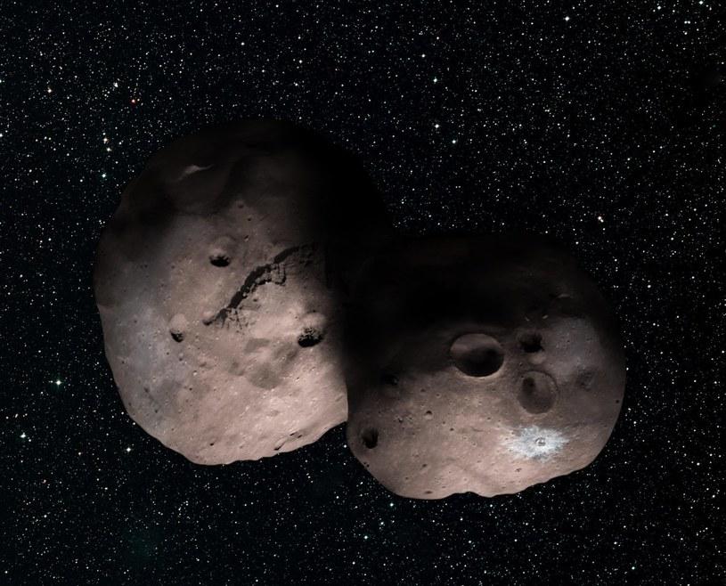 2014 MU69 - wizja podwójnej planetoidy /materiały prasowe