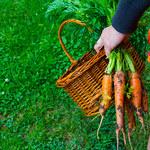 3 suplementy diety dla wegetarian