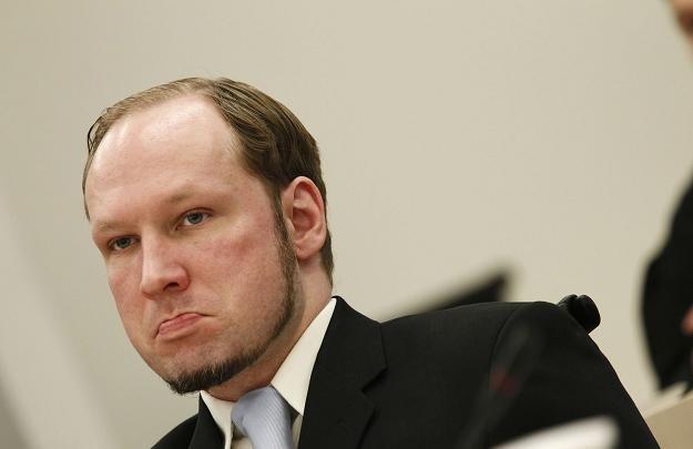 33-letni Breivik tłumaczył po aresztowaniu, że chciał zapobiec wielokulturowości /AFP