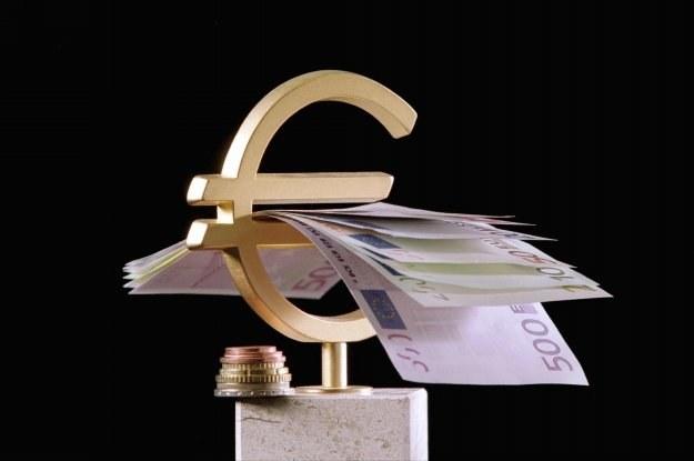 39 proc. ankietowanych uważa, że Polska powinna przyjąć euro najwcześniej w 2014 roku /AFP