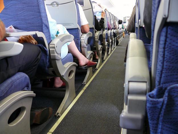 4-osobowa rodzina lecąca na wakacje może zaoszczędzić ok. 105 zł /© Panthermedia