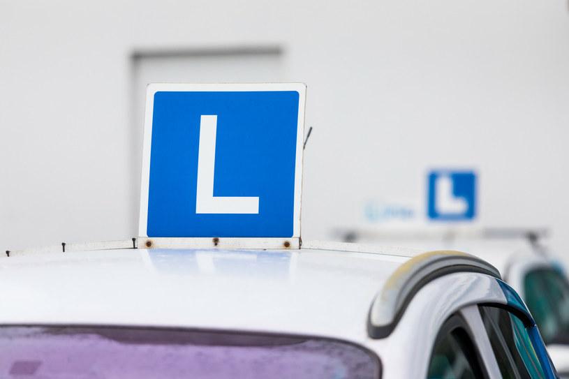 40-latek chciał zdać egzamin na prawo jazdy za młodszego brata /ARKADIUSZ ZIOLEK /East News
