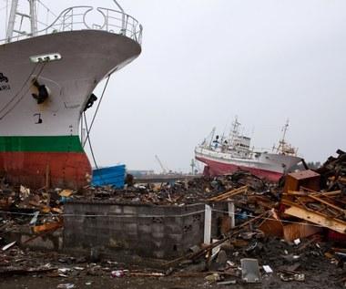 400-kilometrowy mur ochroni Japonię przed tsunami?