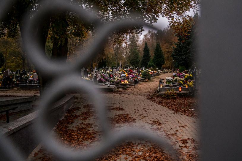 41-latek wykopał zwłoki swojego ojca na cmentarzu i zabrał szczątki, zdj. ilustracyjne /Marcin Bruniecki /Reporter